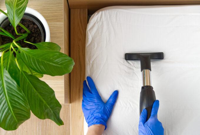 Les solutions naturelles anti-acariens pour votre chambre